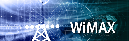 EVALUATION OF THE SERVICE QUALITY IN WIRELESS NETWORKS BASED ON WIMAX TECHNOLOGY
