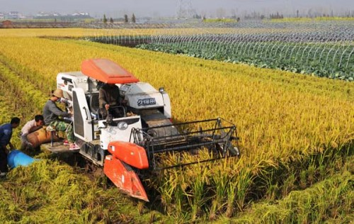 MODERNIZATION OF AGRICULTURE IN MARATHWADA REGION