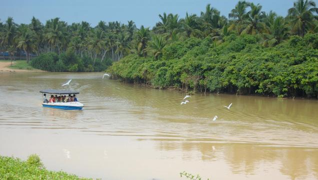 TOURISM PROMOTION OF BACKWATERS AT POOVAR