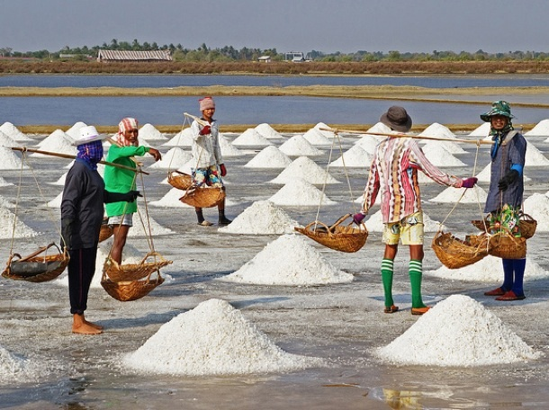 SALT ACTS – A  MAJOR SOURCE OF REVENUE  EXPLOITATION OF COLONIAL GOVERNMENT   IN THE MADRAS PRESIDENCCY