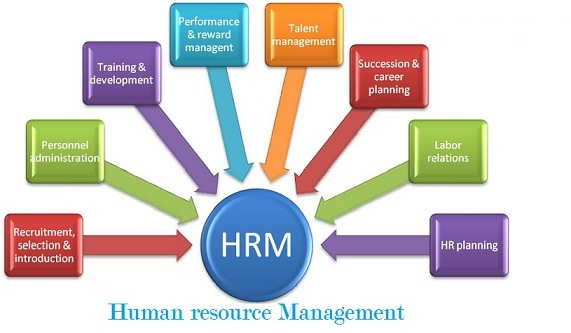 HUMAN RESOURCE MANAGEMENT IN INDIA