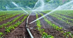 WATER MANAGEMENT & AGRICULTURE