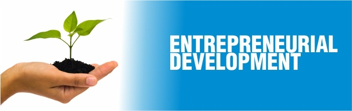 ENTREPRENEURIAL DEVELOPMENT IN  AND AROUND TIRUCHIRAPPALLI DISTRICT  -  A STUDY
