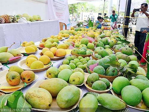 TRENDS IN THE EXPORT OF MANGO  FROM INDIA