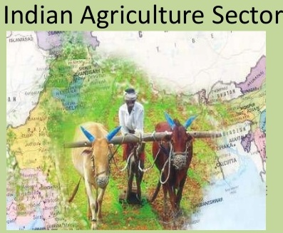 INDIAS AGRICULTURAL SECTOR: CONSTRAINTS  AND MEASURES