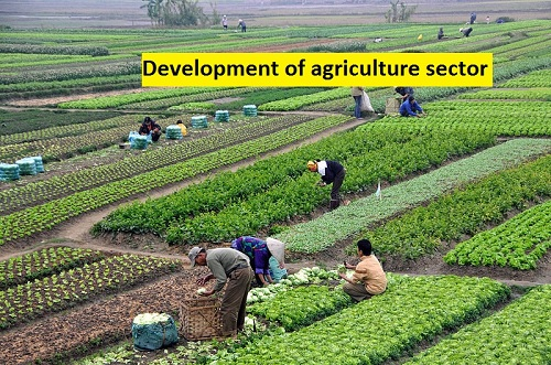 IMPACT OF TECHNOLOGY ON THE DEVELOPMENT OF AGRICULTURE IN MALDA  DISTRICT, WEST BENGAL